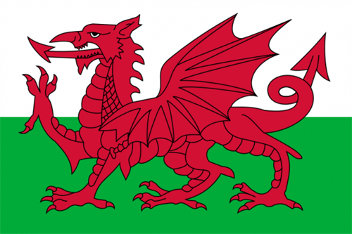 Flag Of Wales 2Svg 0